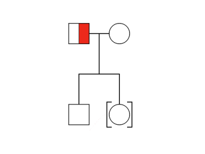 Simple Pedigree